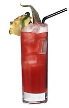 Picture of Club Twain. The Club Twain drink is made from white rum, Passoa, cranberry juice and pineapple juice, and served in a highball glass.