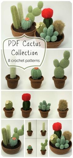 8 different crocheted cactus planters! You can't kill these! they would make great gifts to make for coworkers or friends! Perfect for the office! #crochet #pattern #crochetpattern #cacti #cactus #patternset #patterndeals #crafts #yarn #amigurumi #craftevangelist