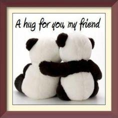 panda bear hug for you my friend Big Hugs For You, Hug You, Hug Pictures, My Best Friend, Best Friends, Dear Friend, Happy Hug Day, Happy Weekend, Friends Hugging
