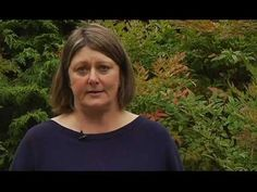 ▶ PRUNING, Part 4 of 6 - Pruning Secrets - Plant Amnesty - YouTube
