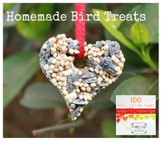 {Heart Shaped DIY Bird Feeder}      100 Acts of Kindness Challenge #1: Show love to your environment by feeding the birds or picking up trash or planting a tree...    Will you join in?