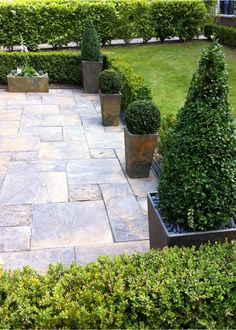 Tall, tapered planters in Slate