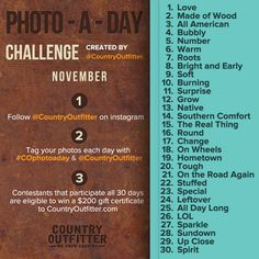Win PRIZES november photo a day challenge