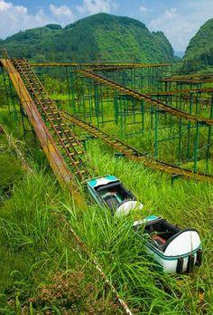 Amusement park... Roller coasters last ride...