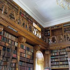 library at Festetics Castle in Hungary