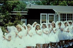 Joseph Hill Academy Staten Island New York photo 18 Flower Girl Tutu, Flower Girl Dresses, Flower Girls, Purple Bridesmaid Dresses, Wedding Dresses, Party Dresses, Holy Communion Dresses, Girls Pageant Dresses, Lace Weddings