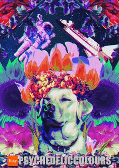 Space Dog Queen Zakathina, the Goddess of Flowers - Printable Psychedelic Poster!  Zakathina isnt your usual Dog Queen youve already become used to. Oh no, shes the Space Dog Queen! Sounds unbelievable? Well henny you better believe it, because you can clearly see this psychedelic poster of Zakathina and its the best proof shes real. She is the definition of defying (gravity) all boundaries. I mean, she grows flowers in space! If you need a reminder, that space is (not anymore) the limit…
