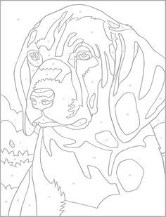Welcome To Dover Publications Creative Haven Dogs Color By Number Coloring Book