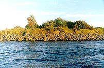 Harkisaari, Vyborg