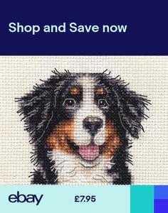 Bernese Mountain, Mountain Dogs, Crochet Patterns, Cross Stitch, Sewing Diy, Stitch Kit, Corner, Crafty, Ebay