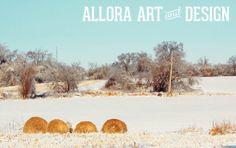 ice storm | december 24, 2013 | michigan see all photos at www.facebook.com/... ©2013 allora art and design  ::::::::::::::::::::::::::::::::::::::::::::::::           #photography #winter #ice #snow #winterphotography #michigan #michiganwinter #field #nature #puremichigan #alloraartanddesign