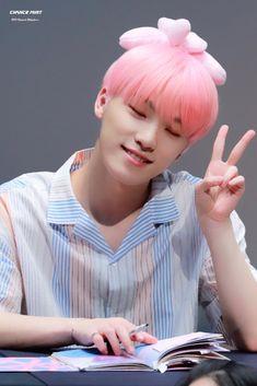 Wonwoo, Jeonghan, Seungkwan, Dino Seventeen, Carat Seventeen, Seventeen Debut, Seventeen The8, Hoshi, Vernon