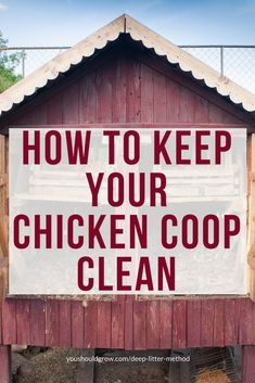 If you're a parent of some backyard chickens, then I know you'll appreciate the ease of using the deep litter method to keep their coop clean. In this article, I'll tell you why the deep litter method is not only great for your birds, but also for you and Best Chicken Coop, Backyard Chicken Coops, Chicken Coop Plans, Building A Chicken Coop, Inside Chicken Coop, Small Chicken Coops, Chicken Coop Designs, Chicken Tractors, Raising Backyard Chickens