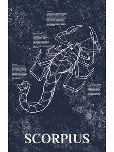 Signos do zodíaco e astroligia: знаки зодиака, астрология znaki zodiaka, astrologi. Scorpio Art, Astrology Taurus, Zodiac Art, Zodiac Horoscope, Astrology Signs, Tarot, Zodiac Signs Elements, Astronomy Tattoo, Esoteric Art