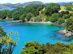 Urupukapuka, Yeni Zelanda
