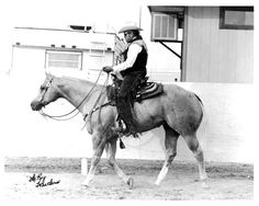 Premium Skip, 1977 palomino stallion, (Skippa Lark x Skippits Premium by Skip 3 Bar), Breeder: H. J. Wiescamp. Record: H-34.5, P-63.0, AQHA Champion, ROM Halter, ROM Performance  1982 Pacific Coast All-Around Cutting Champ.