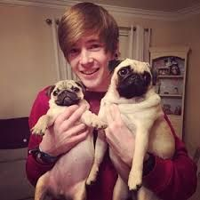 Dantdm and his pugs