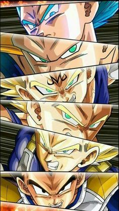 Prince of all sayians Vegeta-sama❗
