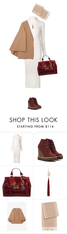 """""""Polished & Warm"""" by polylana on Polyvore featuring Alice + Olivia, STELLA McCARTNEY, Marc Jacobs and Anna e Alex"""