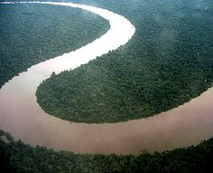 Amazon river - aerial view