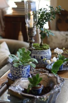 A trifecta of vintage silver, orchids (and other plants), and blue and white containers. Love blue and white filled with fresh green. Blue And White China, Blue China, Love Blue, Delft, White Springs, White Dishes, Chinoiserie Chic, Ginger Jars, White Houses