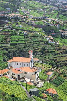 Madeira, Portugal: the most enviable island on earth? - Telegraph
