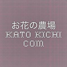 お花の農場 Kato-kichi.com
