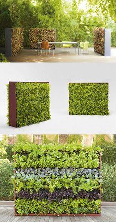 Vertical #garden GREENERY by @paola_lenti