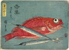 Giclee Print: Red Snapper and Halfbeak, by Utagawa Hiroshige : Mont Fuji, Fish Print, Classical Art, Illustrations, Illustration Art, Japanese Prints, Japan Art, Woodblock Print, Thing 1