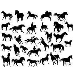 Horses silhouettes vector