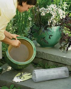 """See the """"Soil-Saving Plant Screen"""" in our 60 Great Ideas for the Garden gallery"""