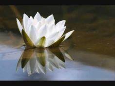 Karunesh: Silent Heart - A World of Sound and Silence: Beyond Time  Good Morning! Guten Morgen! Bonjour! Buongiorno! Buenos Dias! Günaydin! בקר טוב صباح الخير 早安 おはようございますBom dia! Selamat Pagi!