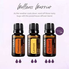 ~Even more immune support~ . I've been fighting a cold and if you saw my earlier post, I've been drinking a beautiful immune boosting tea. Essential Oils Guide, Essential Oil Uses, Essential Oil Diffuser Blends, Doterra Diffuser, Doterra Essential Oils, Doterra Blends, Frankincense Essential Oil, Aromatherapy Oils, Osho
