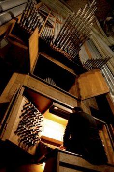 Linz, neuer Dom (Mariendom-Rudigier-Orgel) – Organ index, die freie Orgeldatenbank