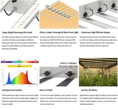 China 600w LED Grow Light Factory, Suppliers and Manufacturers - SLT Bar Led, Cannabis Growing, Led Grow, Photosynthesis, Product Offering, Bar Lighting, White Light, Beautiful Gardens