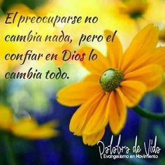 Spanish Inspirational Quotes, Spanish Quotes, Inspirational Thoughts, Happy Day Quotes, Life Quotes, Serenity Prayer In Spanish, Gods Love Quotes, Reflection Quotes, Christian Verses