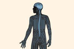 #Neuropatía diabética.  Que te asuste es normal, es una de las complicaciones asociadas a la #diabetes más frecuentes. Para desvelarte todos sus secretos y enseñarte a prevenirla, la doctora Maite Ortega ha preparado este artículo en el que no se deja nada en el tintero.
