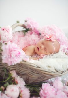 so sweet- Heidi Hope Photography Baby Girl Photos, Cute Baby Pictures, Newborn Pictures, Spring Newborn Photos, Newborn Poses, Newborn Session, Newborns, Newborn Baby Photography, Children Photography