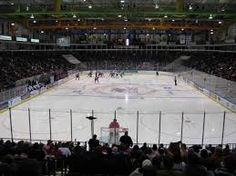 amarillo bulls arena - Google Search