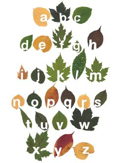 Graphic designer Twan van Keulen cut the whole alphabet out of leaves to create a leaf typography