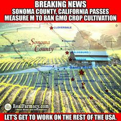 Make it nation-wide!  GMOs are ALREADY banned in many other countries - let's add OURS to the list!