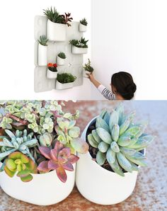 Urbio Vertical Gardening & Organization System -TAKING THE OUTDOORS IN. PERFECT FOR GROWING HERBS INDOORS.