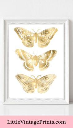 Gold Butterflies Art Print. This beautiful gold effect butterfly printable is perfect for adding a vintage twist to your home decor.  Vintage Butterfly Art Print, Gold Butterfly, Butterflies Print, Wall Art, Gold Wall Art, Printable Wall Art, Gold Wall Decor, Home Decor, A4 Gold Wall Decor, Gold Wall Art, Butterfly Wall Art, Vintage Butterfly, Gold Walls, Vintage Prints, Printable Wall Art, A4, Wall Art Prints