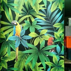 Tropical wallpaper in a closed store window today..  #edith #bordeaux #oldtown #france #summer #summer2015 #deco #design #instainterior #instadesign #decorationdinterieur #decoration #colorsmakemehappy #color #palmtrees #parrots #rainbow #walldecor #wallpaper #tropical #tropicalwallpaper #instadecor #interiordesign #itsallaboutdetails #itsallaboutinteriors #nofilter