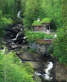 All I Need is a Little Cabin in the Woods Photos) - woods rustic cabin rustic outdoors nature mountain log cabin house home cabin in the woods cabin Little Cabin, Little Houses, Ideas De Cabina, Beautiful Homes, Beautiful Places, Cabin In The Woods, Cottage In The Woods, Cabins In The Mountains, Appalachian Mountains