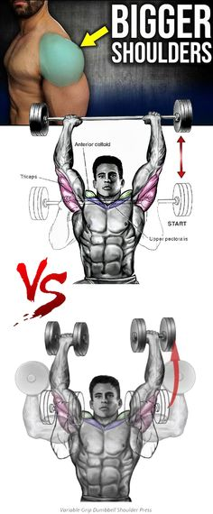 💪How to Variable-Grip Dumbbell Shoulder Press Variations Shoulder Press Forearm Muscles, Dumbbell Shoulder Press, Shoulder Workout, Shoulder Exercises, Muscle Fitness, Fitness Man, Health And Fitness Tips, Health Motivation, Weight Training