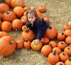 "Ivanka Trump publica uma foto divertida da filha, Arabella Rose: ""Don't even think about taking my pumpkins!!"""