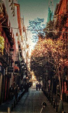 Madrid de los Austrias en Madrid, Madrid