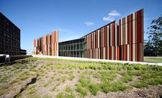Macquarie University Library – FJMT - Story Photography Architecture