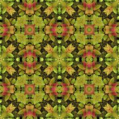 Bush8 fabric by bahrsteads on Spoonflower - custom fabric